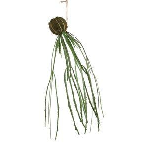 PTMD Kunstplant - Leaves Hangende Moss Ball Cactus